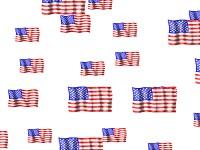 American Flag Screensaver 1.1 screenshot