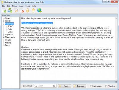 Flashnote 4.81 screenshot