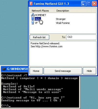 Fomine NetSend 1.4 screenshot