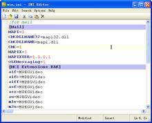 INI Editor 1.00 screenshot
