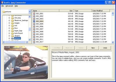 Scott's JPEG Commenter 1.1 screenshot