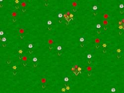 Spring Wildflowers Screen Saver 1.3 screenshot