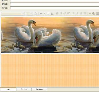 Wings II Email Stationery 1.0a screenshot