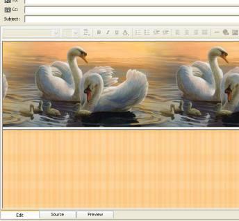 Wings II Email Stationery 1.0a screenshot